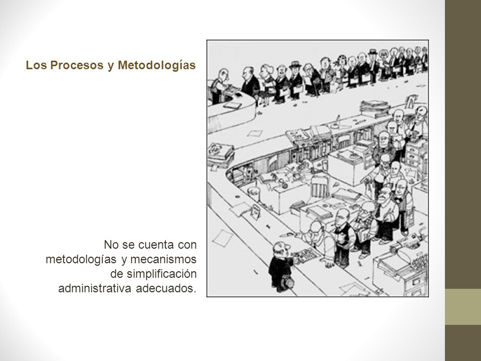Los Procesos y Metodologías