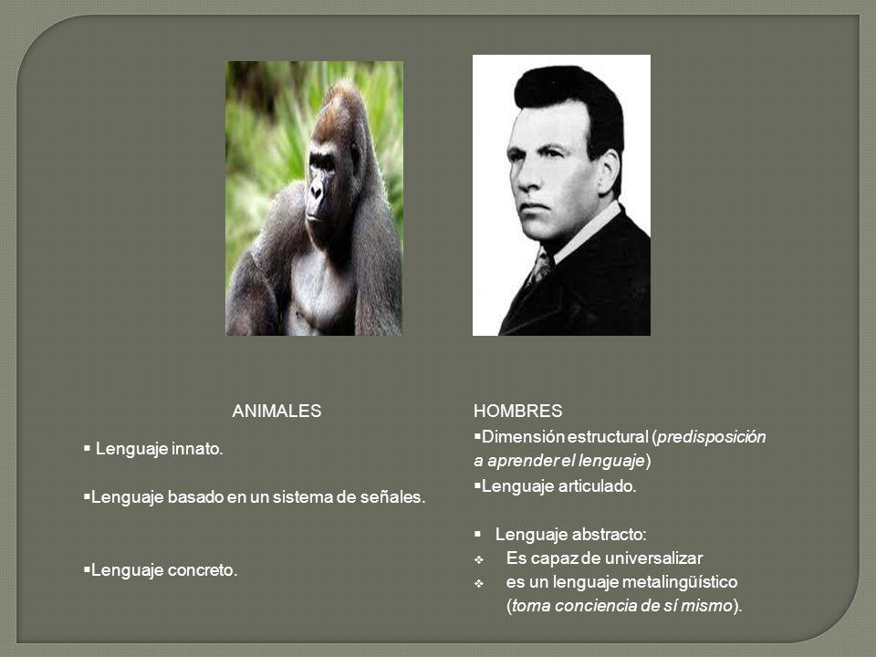 ANIMALES HOMBRES. Lenguaje innato. Dimensión estructural (predisposición a aprender el lenguaje)