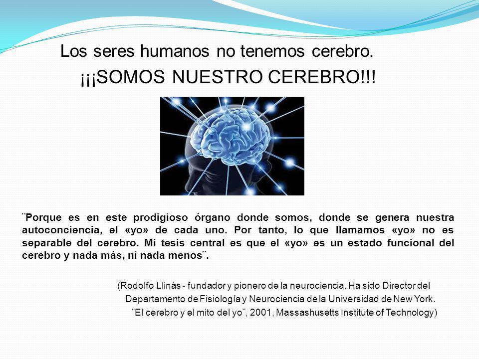 Los seres humanos no tenemos cerebro. ¡¡¡SOMOS NUESTRO CEREBRO!!!