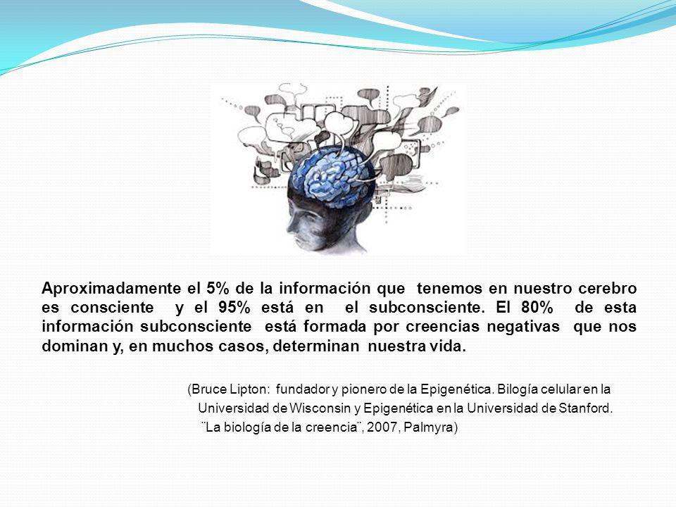 Aproximadamente el 5% de la información que tenemos en nuestro cerebro es consciente y el 95% está en el subconsciente. El 80% de esta información subconsciente está formada por creencias negativas que nos dominan y, en muchos casos, determinan nuestra vida.