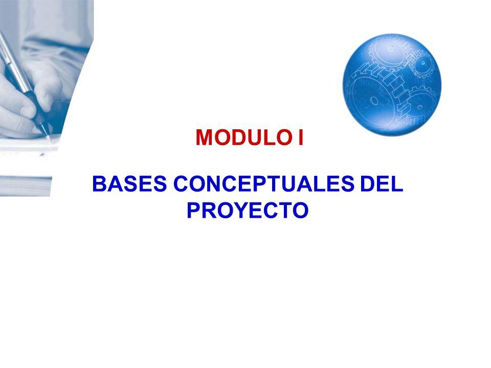 BASES CONCEPTUALES DEL PROYECTO
