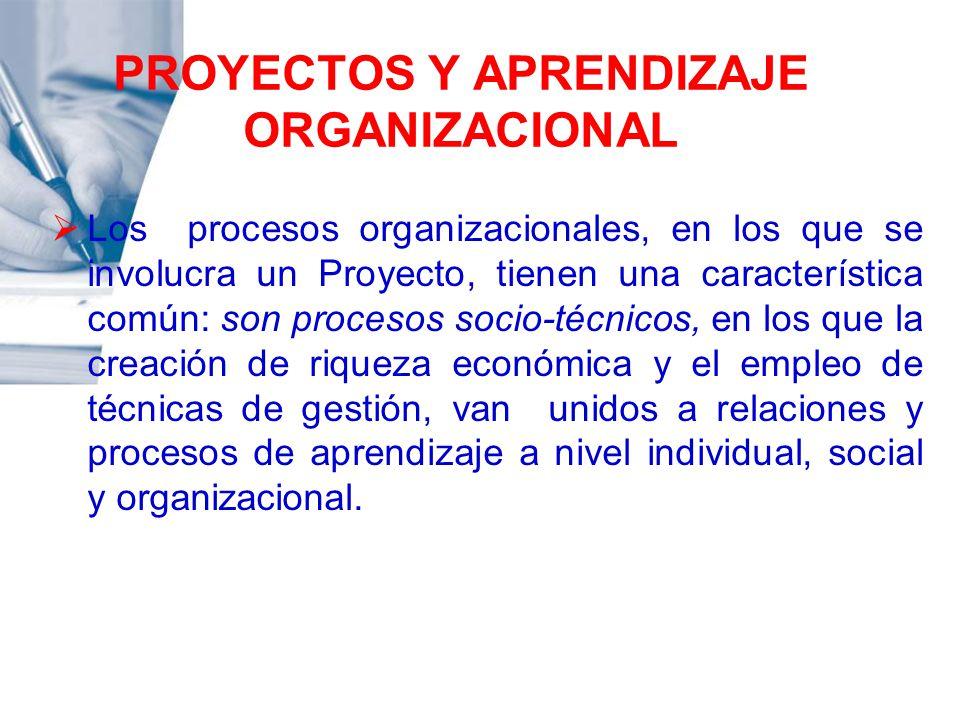 PROYECTOS Y APRENDIZAJE ORGANIZACIONAL