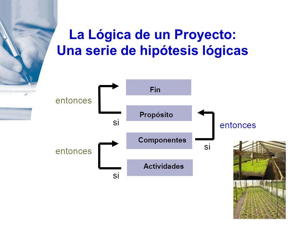 La Lógica de un Proyecto: Una serie de hipótesis lógicas