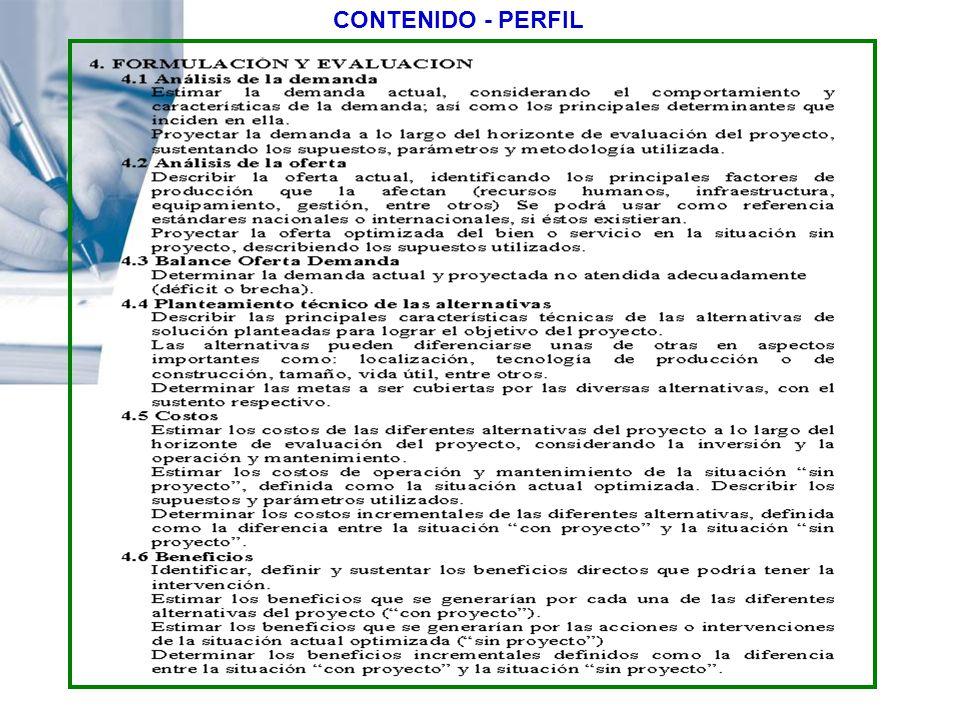 CONTENIDO - PERFIL