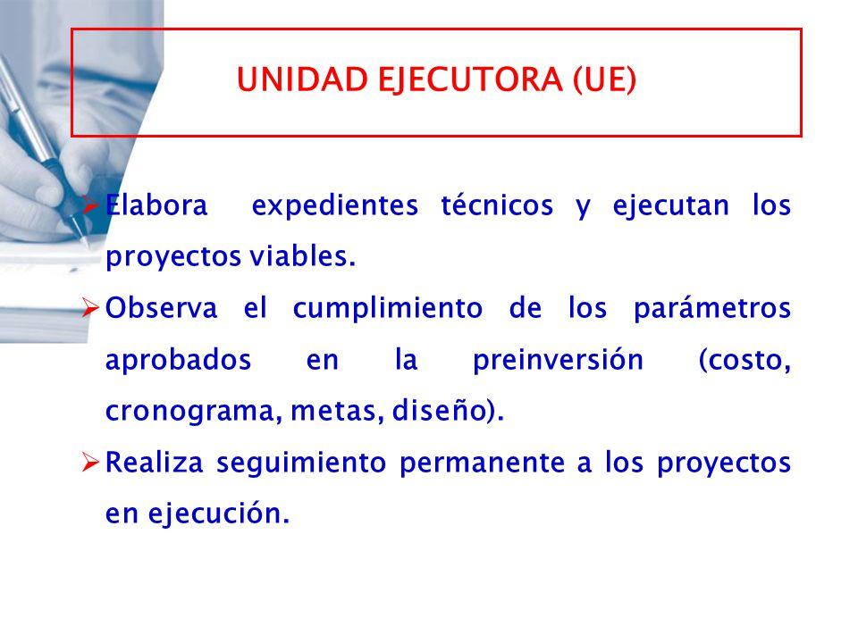 UNIDAD EJECUTORA (UE) Elabora expedientes técnicos y ejecutan los proyectos viables.