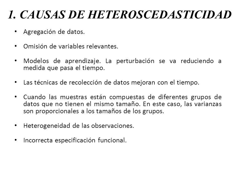 1. CAUSAS DE HETEROSCEDASTICIDAD