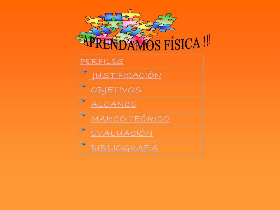 PERFILES JUSTIFICACIÓN OBJETIVOS ALCANCE MARCO TEÓRICO EVALUACIÓN