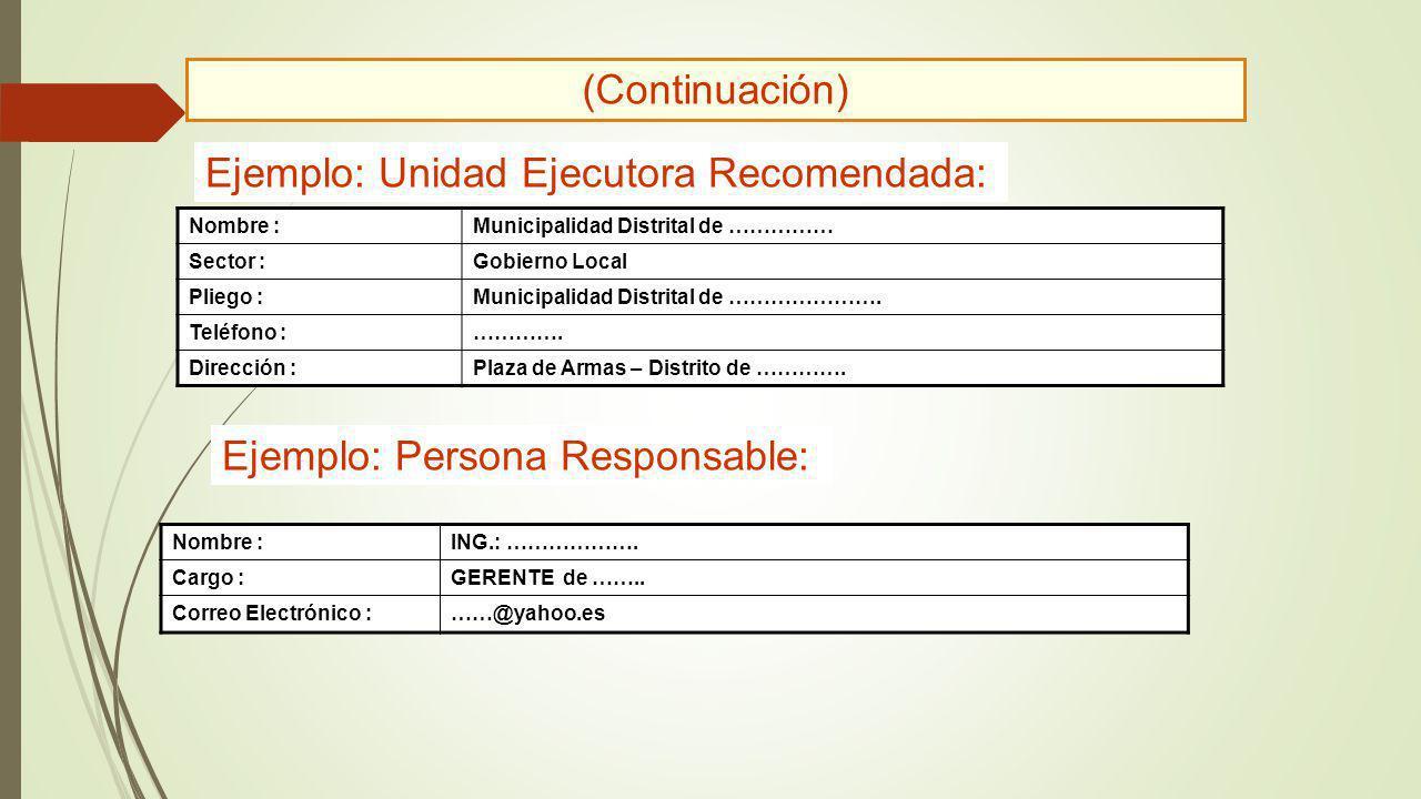 Ejemplo: Unidad Ejecutora Recomendada: