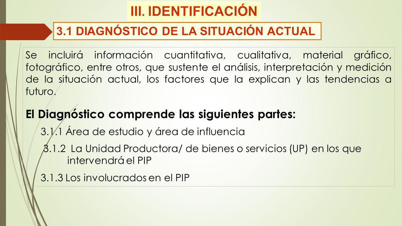 III. IDENTIFICACIÓN 3.1 DIAGNÓSTICO DE LA SITUACIÓN ACTUAL