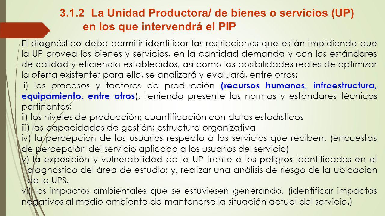 3.1.2 La Unidad Productora/ de bienes o servicios (UP) en los que intervendrá el PIP