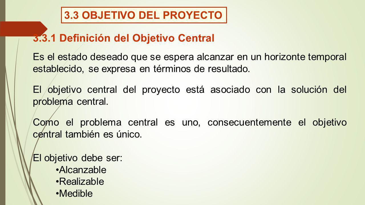 3.3.1 Definición del Objetivo Central