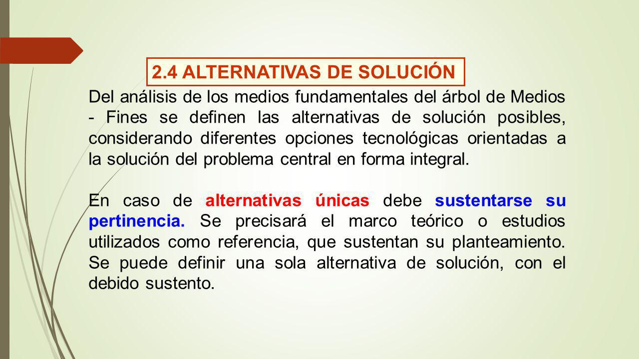 2.4 ALTERNATIVAS DE SOLUCIÓN