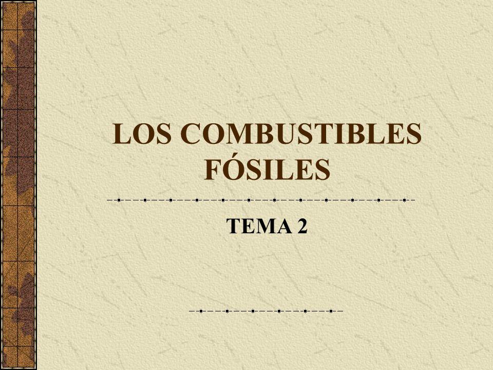 LOS COMBUSTIBLES FÓSILES