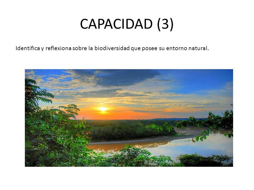 CAPACIDAD (3) Identifica y reflexiona sobre la biodiversidad que posee su entorno natural.