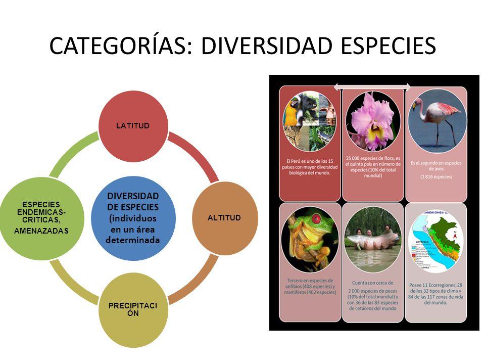 CATEGORÍAS: DIVERSIDAD ESPECIES