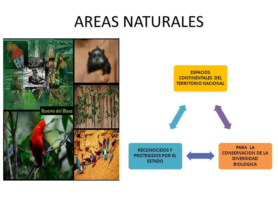 AREAS NATURALES ESPACIOS CONTINENTALES DEL TERRITORIO NACIONAL