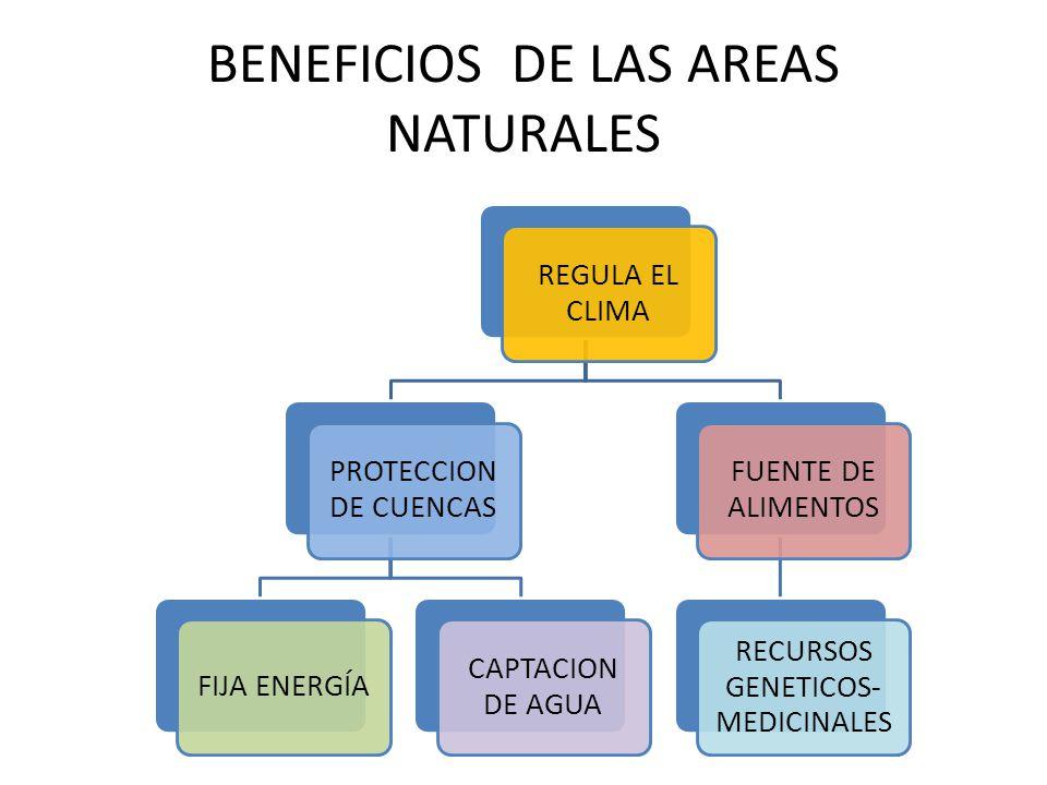 BENEFICIOS DE LAS AREAS NATURALES