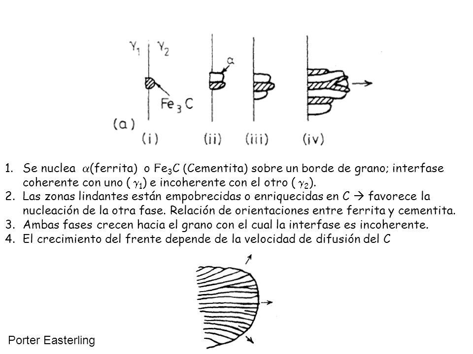 Se nuclea (ferrita) o Fe3C (Cementita) sobre un borde de grano; interfase coherente con uno (1) e incoherente con el otro (2).