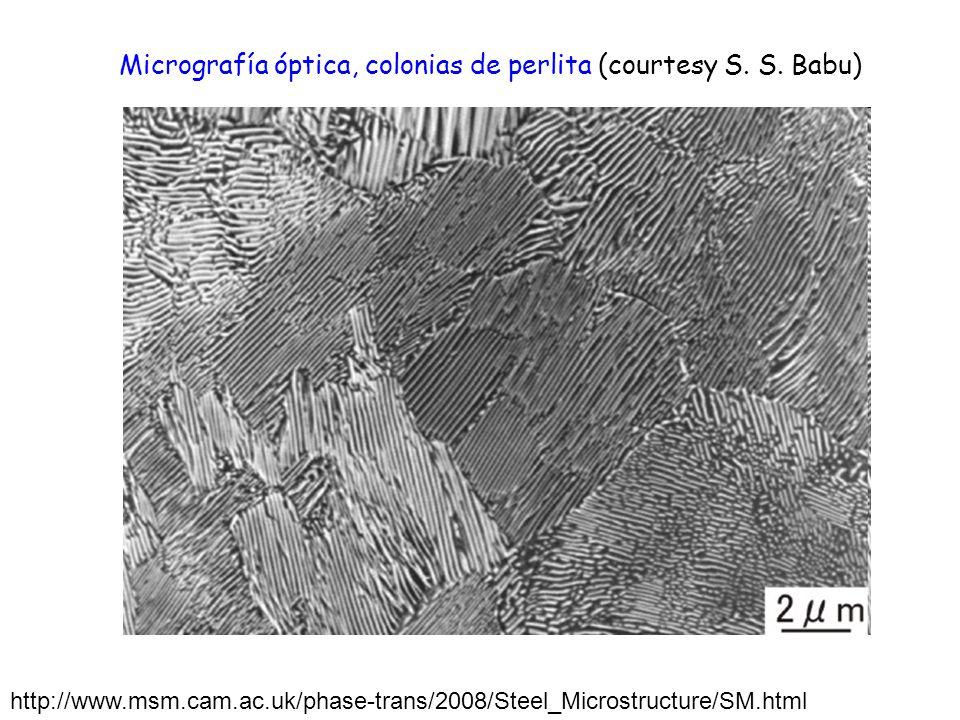 Micrografía óptica, colonias de perlita (courtesy S. S. Babu)