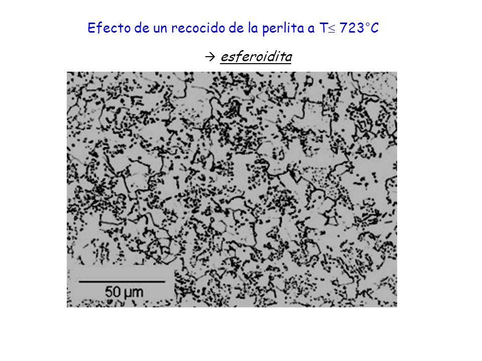Efecto de un recocido de la perlita a T 723°C