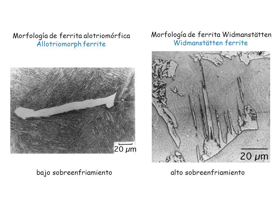 Morfología de ferrita alotriomórfica Allotriomorph ferrite
