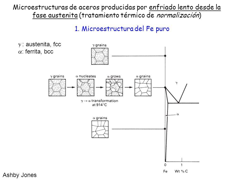 1. Microestructura del Fe puro