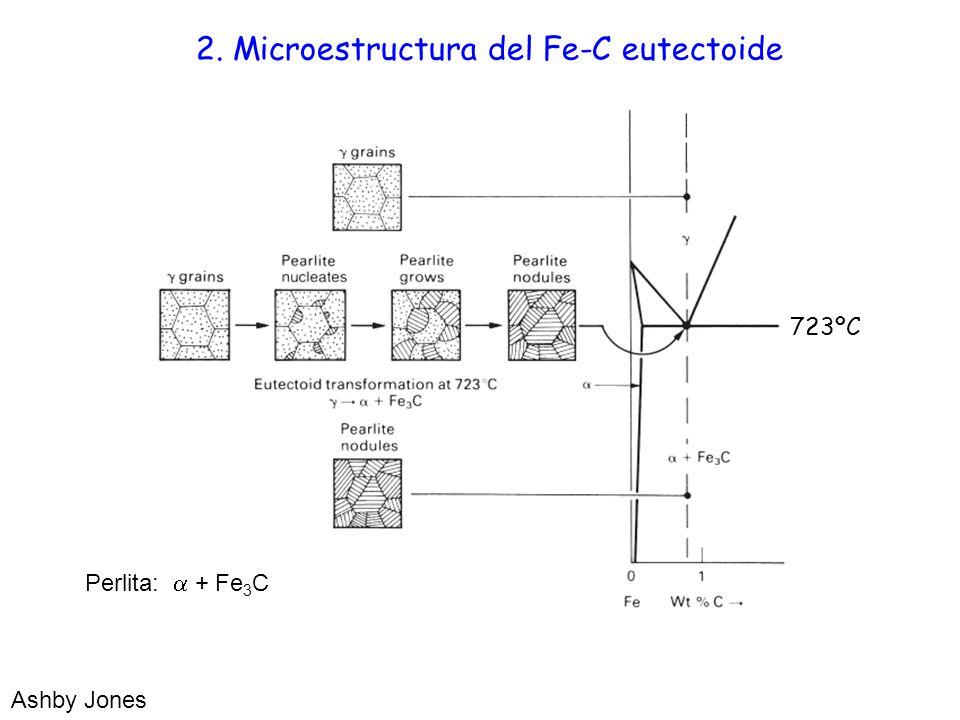 2. Microestructura del Fe-C eutectoide