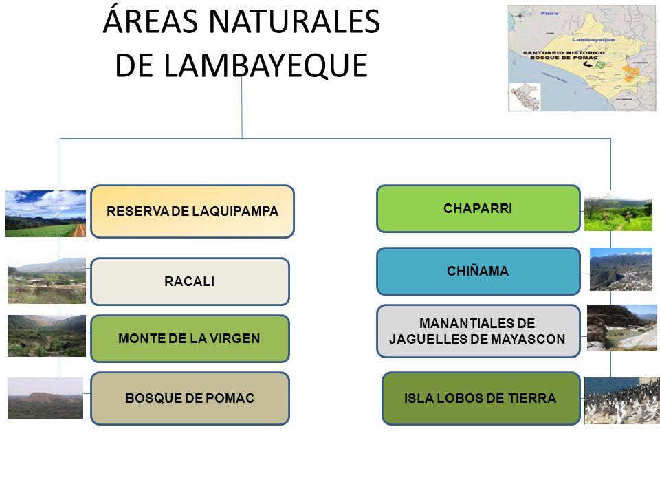 ÁREAS NATURALES DE LAMBAYEQUE