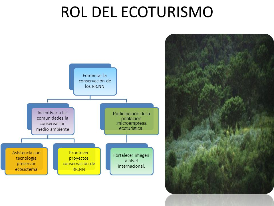 ROL DEL ECOTURISMO Fomentar la conservación de los RR.NN