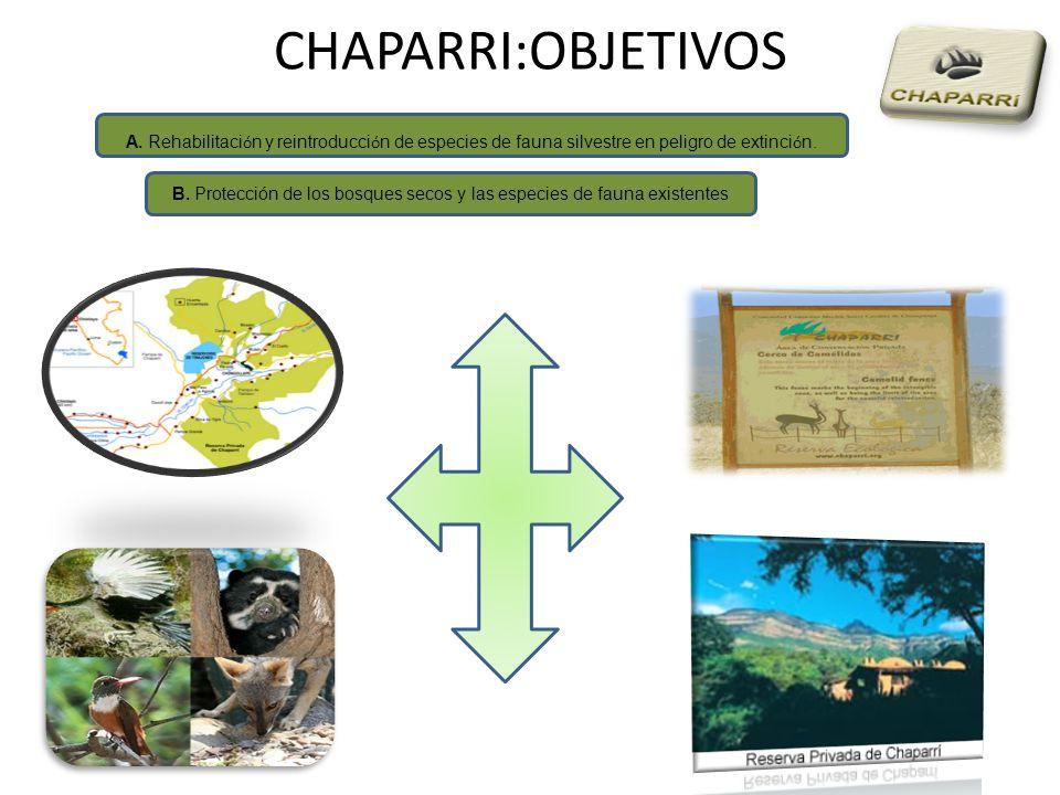 B. Protección de los bosques secos y las especies de fauna existentes