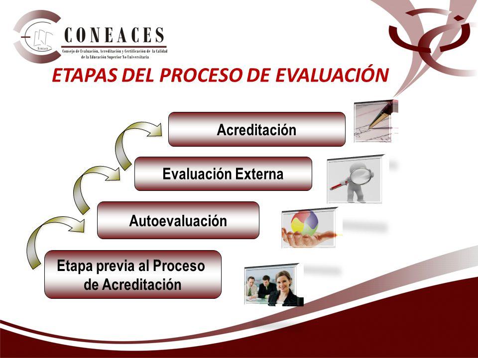 ETAPAS DEL PROCESO DE EVALUACIÓN