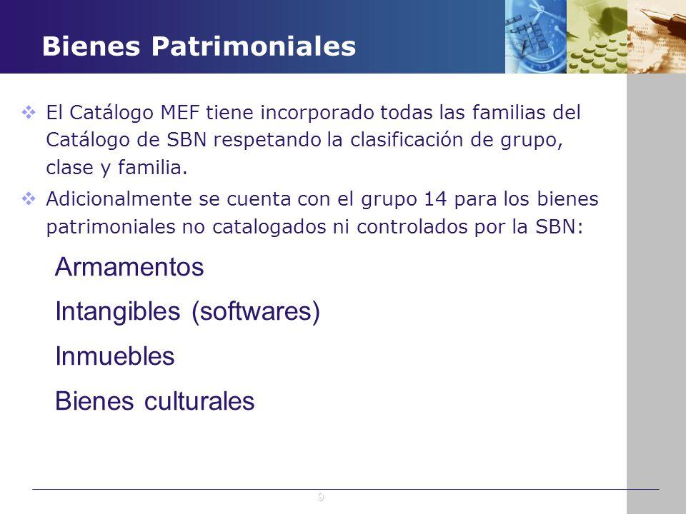 Intangibles (softwares) Inmuebles Bienes culturales