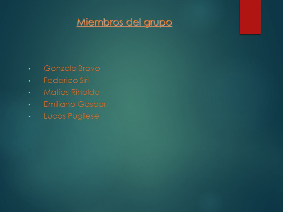 Miembros del grupo Gonzalo Bravo Federico Siri Matias Rinaldo