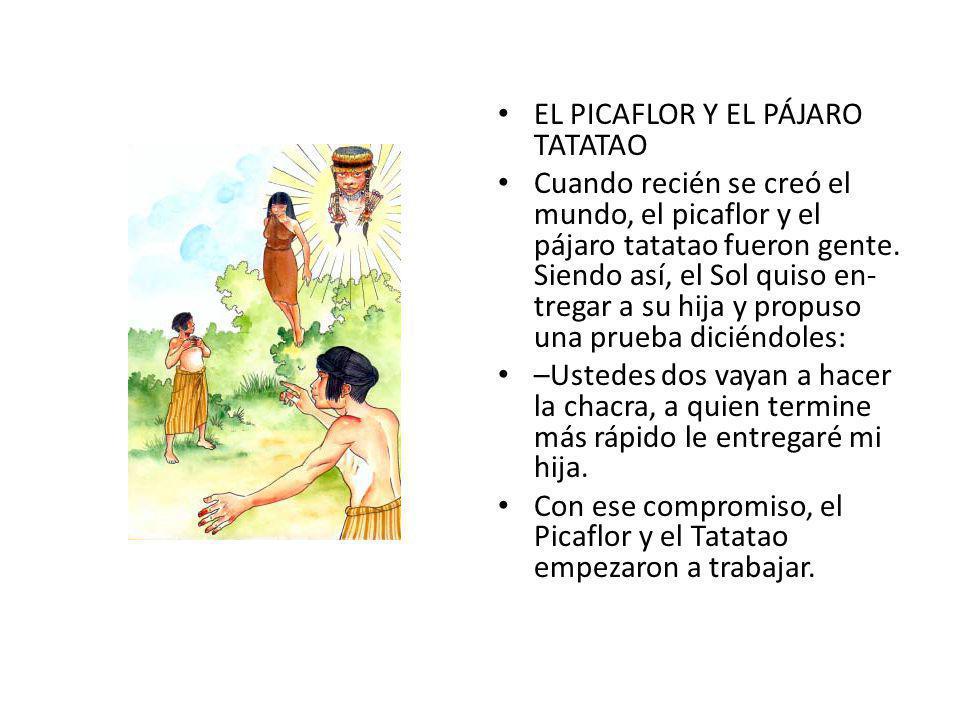 EL PICAFLOR Y EL PÁJARO TATATAO