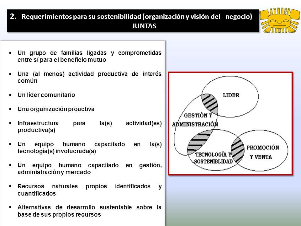 2. Requerimientos para su sostenibilidad (organización y visión del negocio)