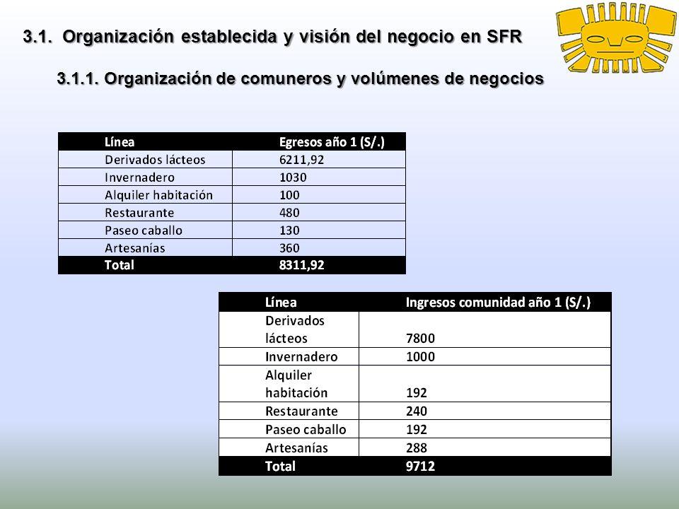 3.1. Organización establecida y visión del negocio en SFR