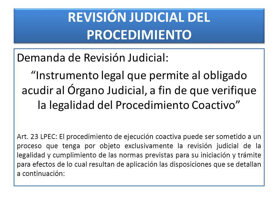REVISIÓN JUDICIAL DEL PROCEDIMIENTO
