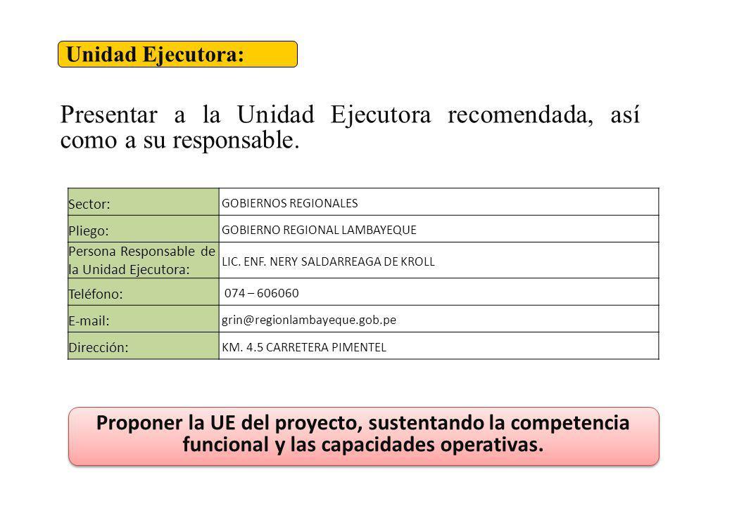 Unidad Ejecutora: Presentar a la Unidad Ejecutora recomendada, así como a su responsable. Sector: GOBIERNOS REGIONALES.
