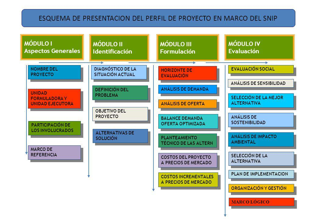 ESQUEMA DE PRESENTACION DEL PERFIL DE PROYECTO EN MARCO DEL SNIP