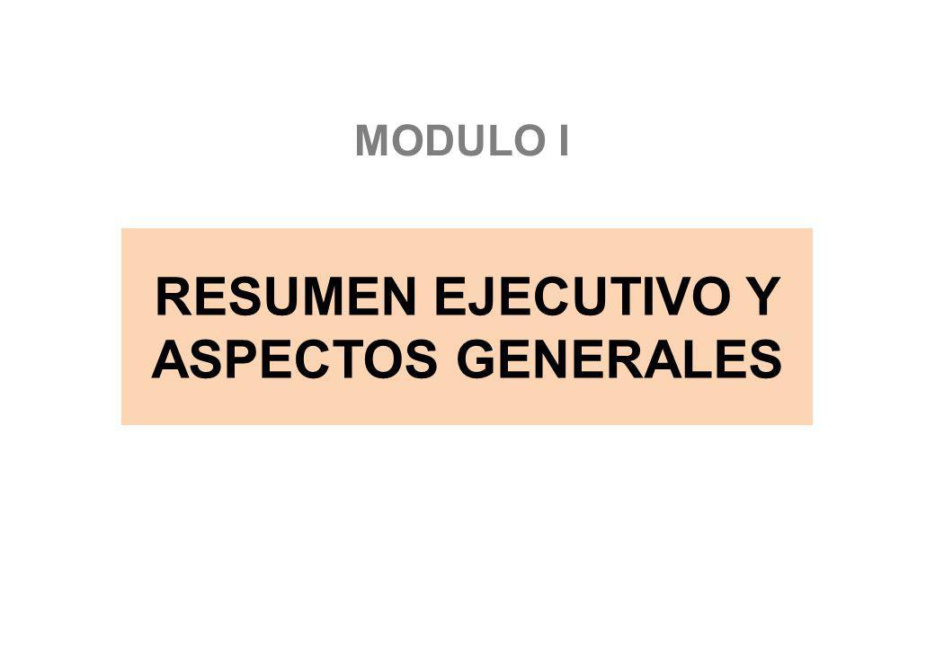 RESUMEN EJECUTIVO Y ASPECTOS GENERALES