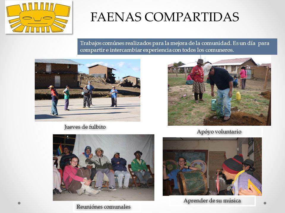 FAENAS COMPARTIDAS