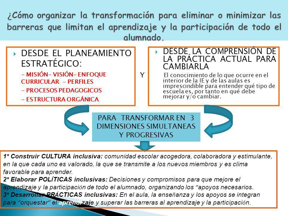 PARA TRANSFORMAR EN 3 DIMENSIONES SIMULTANEAS Y PROGRESIVAS
