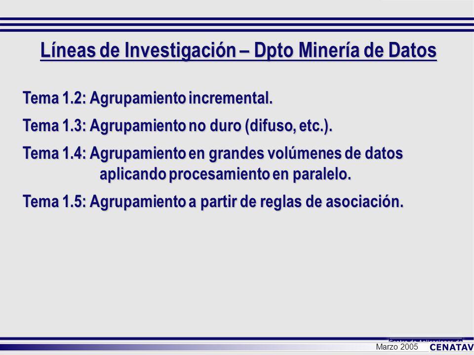 Líneas de Investigación – Dpto Minería de Datos