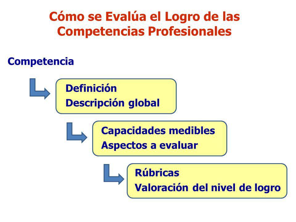Cómo se Evalúa el Logro de las Competencias Profesionales