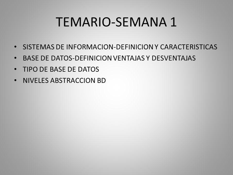 TEMARIO-SEMANA 1 SISTEMAS DE INFORMACION-DEFINICION Y CARACTERISTICAS