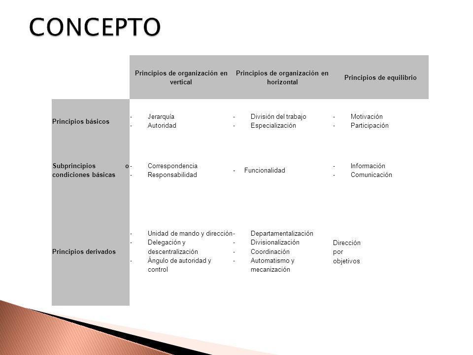CONCEPTO Principios de organización en vertical