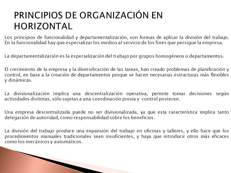 PRINCIPIOS DE ORGANIZACIÓN EN HORIZONTAL