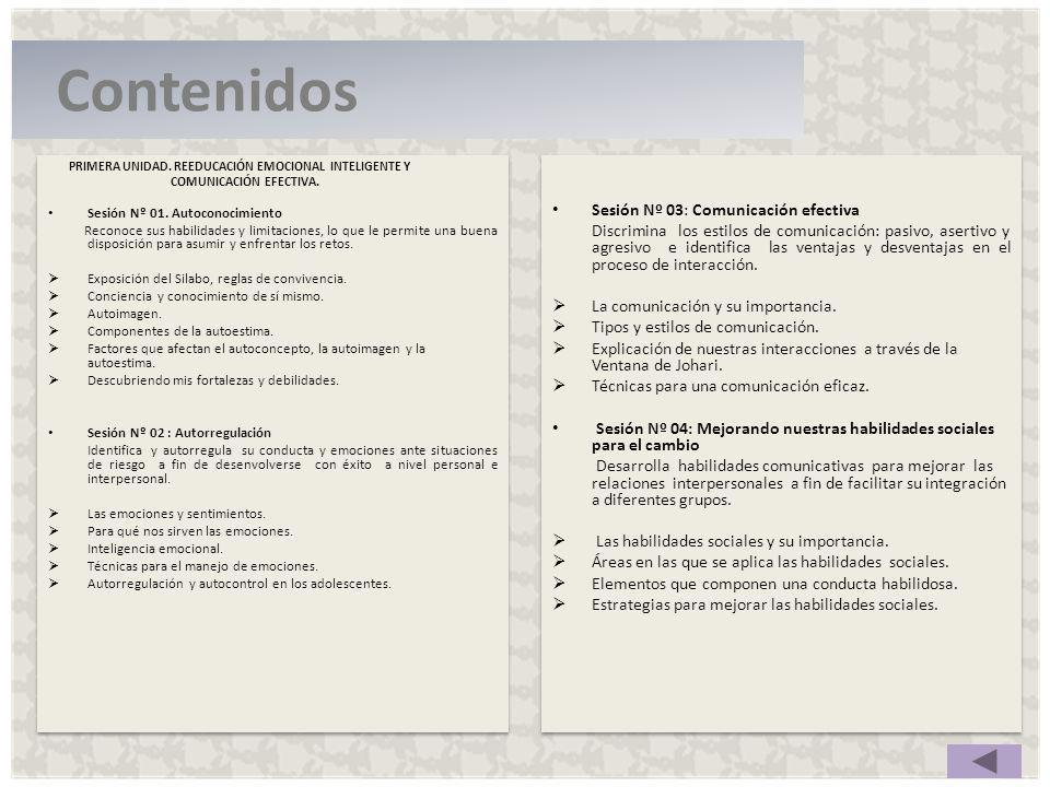Contenidos Sesión Nº 03: Comunicación efectiva