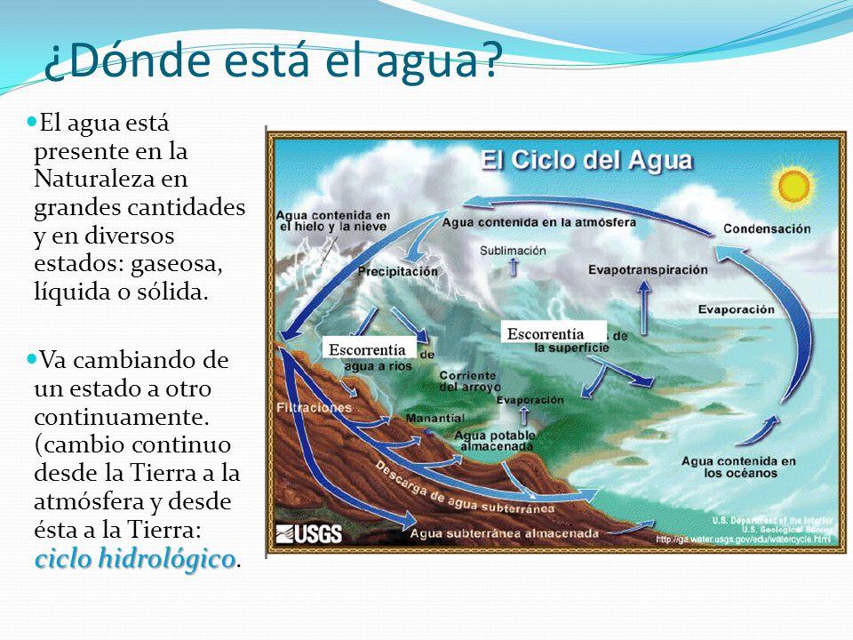 ¿Dónde está el agua El agua está presente en la Naturaleza en grandes cantidades y en diversos estados: gaseosa, líquida o sólida.