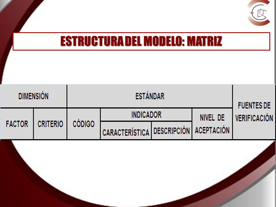 ESTRUCTURA DEL MODELO: MATRIZ